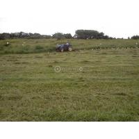 40 HECTARES OF LAND FOR SALE!!!
