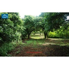 Real Estate > Properties for Sale > Farms Ganga! Se vende linda finca en Tisma
